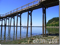 mostly gig harbor 007